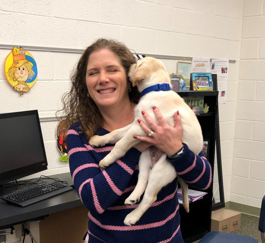 New Seeing Eye Dog, Seely, captures Hamburg hearts